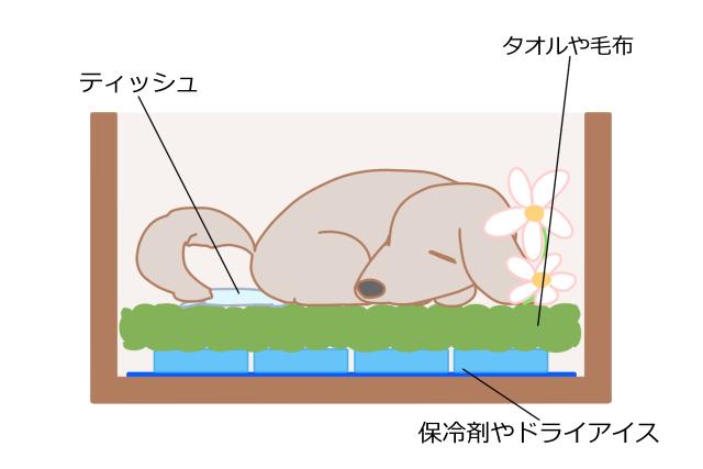 【4】涼しい環境で安置する