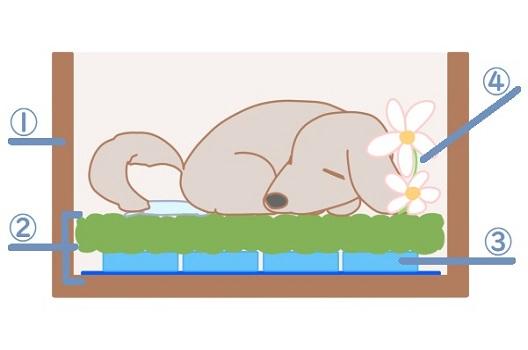 犬の火葬方法と費用の相場|安置方法・当日のマナー・供養方法まとめ